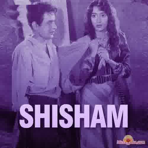 Poster of Shisham (1952)