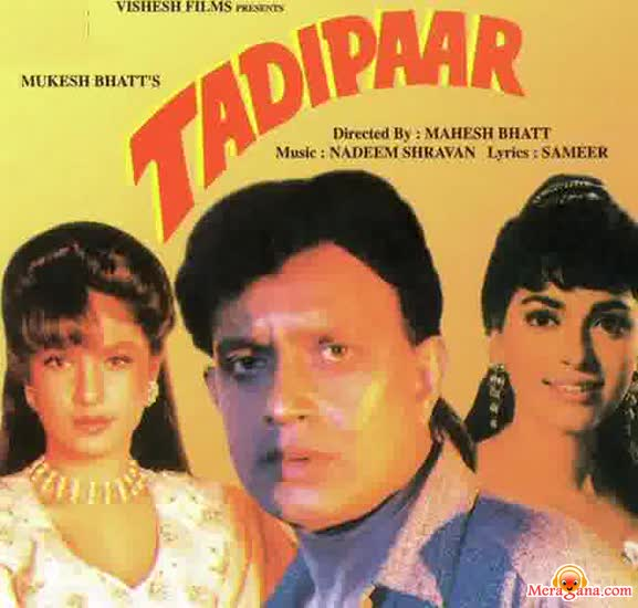Poster of Tadipaar (1993) - (Hindi Film)