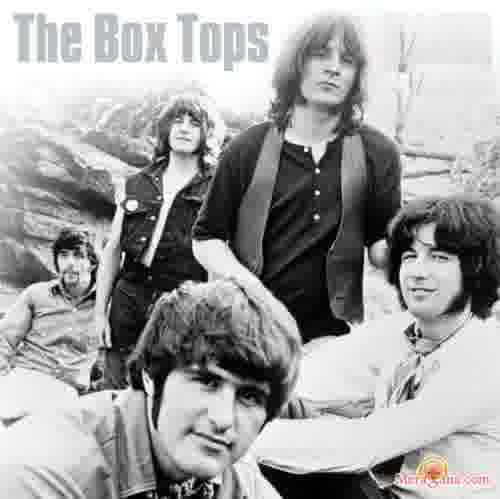 Poster of The Box Tops - (English)