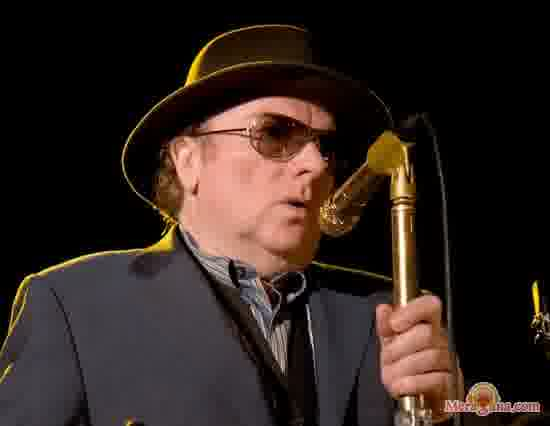 Poster of Van Morrison - (English)