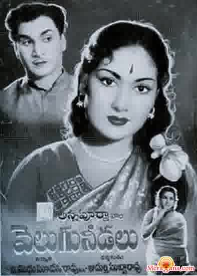 Poster of Velugu Needalu (1964)